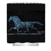 Midnight Run - Weathervane Shower Curtain by John Stephens