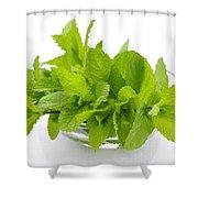 Mint Sprigs In Bowl Shower Curtain by Elena Elisseeva