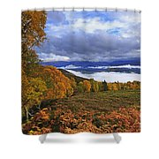Misty Day In The Cairngorms II Shower Curtain by Louise Heusinkveld