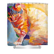 Mona Lisa's Rainbow Shower Curtain by Kimberly Santini