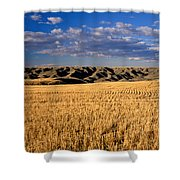 Montana   Field And Hills Shower Curtain by Anonymous