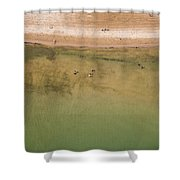 Montrose Beach Dog Park Shower Curtain by Adam Romanowicz