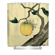 Moon Persimmon And Grasshopper Shower Curtain by Katsushika Hokusai