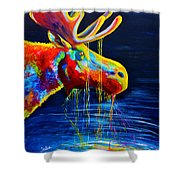 Moose Drool Shower Curtain by Teshia Art