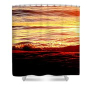 Morning Splash Shower Curtain by Karen Wiles
