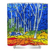 Mosaic Stained Glass - My Woods Shower Curtain by Catherine Van Der Woerd