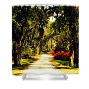 Moss on the Trees at Monks Corner in Charleston Shower Curtain by Susanne Van Hulst
