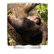 Mother And Youg Gorilla Sleeping In A Tree Shower Curtain by Chris Flees