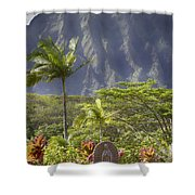 Mother Of Faith Shower Curtain by Douglas Barnard