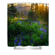 Mount Rainier Sunburst Shower Curtain by Inge Johnsson