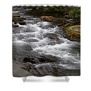 Mountain Stream Shower Curtain by Skip Willits