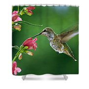 My Favorite Flowers Shower Curtain by William Lee