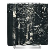 My Light Still Shines For You Shower Curtain by Laurie Search