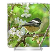 My Little Chickadee in the Cherry Tree Shower Curtain by Jennie Marie Schell