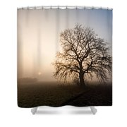 Mystic Morning Shower Curtain by Davorin Mance