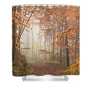 Mystic Woods Shower Curtain by Anne Gilbert