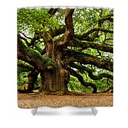 Mystical Angel Oak Tree Shower Curtain by Louis Dallara