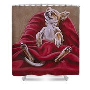 Nap Hard Shower Curtain by Barbara Keith
