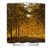 Napa Valley Fall Shower Curtain by Bill Gallagher