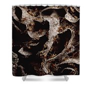 Nasute Termite Nest Amazonian Peru Shower Curtain by Mark Moffett