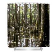 Natchez Trace Wetlands Shower Curtain by Bob Phillips