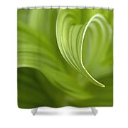 Natural Green Curves Shower Curtain by Claudio Bacinello
