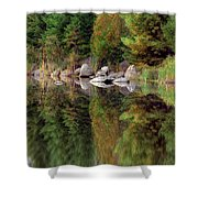 Natures Reflection Shower Curtain by Mark Papke
