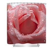 Natures Treasure Shower Curtain by Miguel Winterpacht