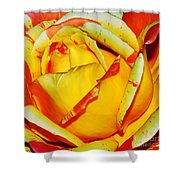 Nature's Vivid Colors Shower Curtain by Kaye Menner