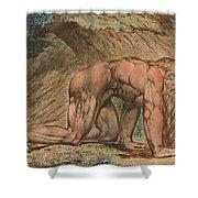 Nebuchadnezzar Shower Curtain by William Blake