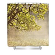 Nebulous Tree Shower Curtain by Heiko Koehrer-Wagner