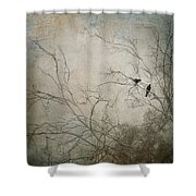 Nevermore... Shower Curtain by Amy Weiss