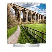 Newbridge Viaduct Shower Curtain by Adrian Evans