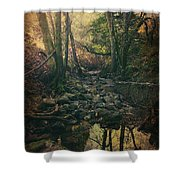 No Matter How Far Shower Curtain by Laurie Search