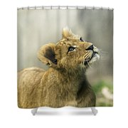 Nobuhle - Looking Up Shower Curtain by Sonya Lang