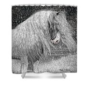 Nor Easter Shower Curtain by Fran J Scott