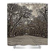 Oak Alley 3 Sepia Shower Curtain by Steve Harrington