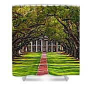 Oak Alley Shower Curtain by Steve Harrington