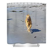 Ocean Run Shower Curtain by Elizabeth Dow