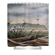 Ocean Shore Shower Curtain by James Williamson