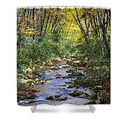 Oconaluftee River In The Gsmnp Shower Curtain by John Haldane