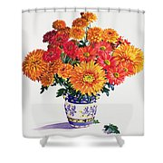 October Chrysanthemums Shower Curtain by Christopher Ryland