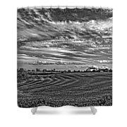 October Patterns Bw Shower Curtain by Steve Harrington
