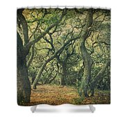 Oh How They Danced Shower Curtain by Laurie Search