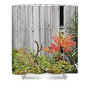 Old Barn in Fall Shower Curtain by Keith Webber Jr