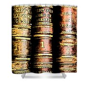 Old Ledgers					 Shower Curtain by Lovina Wright