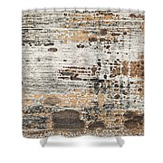 Old Painted Wood Abstract No.1 Shower Curtain by Elena Elisseeva