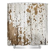 Old Painted Wood Abstract No.3 Shower Curtain by Elena Elisseeva