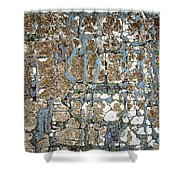 Old Painted Wood Abstract No.5 Shower Curtain by Elena Elisseeva