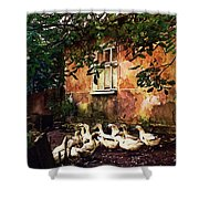 Old Ukrainian Village Shower Curtain by Julie Palencia